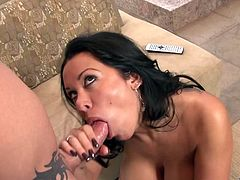 Press play on this great hardcore video and watch the busty Sienna West being fucked like never before by a large cock as she moans.