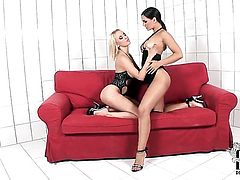Mandy Dee and Eve Angel stretch each others beaver with passion