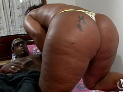 This dirty slut bends over so her man can shove his big black cock in her from behind. He buries his face in her butt and her ass cheeks jiggle as her pounds her hard. The chunky ebony babe loves sucking cock and taking it in her cunt.