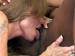 Nothing beats a chubby ebony having her chocolate fanny stimulated by one hot milf in appealing oral