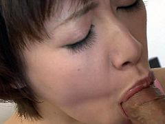 Lusty short haired Japanese girl blows hard cock standing on her knees. Her eyes are closed with pleasure and she dreams of cumshots. But dude puts her on back and drills her muff missionary style.
