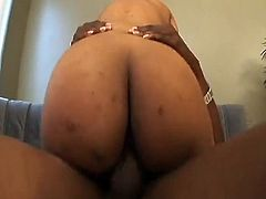 Ebony is what this porno mov is about.