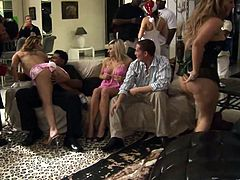 Ginger Snow, Lilly Kingston, Angelina Castro, Jayla Foxx and Heidi Valentine come as call-girls to a bachelor's party. They dance in their miniskirts, then lick each other's twats and allow the men play with their holes.