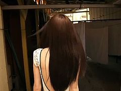 Japanese softcore 244