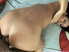 Brunette Hotie With Long Hair Giving A Superb Blowjob