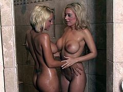 Rough encounter between two hot cougars
