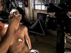 Nacho Vidal makes Melissa Lauren suck his beefy man meat non-stop before she gets her fudge packed