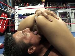 Gorgeous boxer Daisy Marie sucks her opponent's cock in 69 position