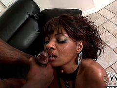 Nasty and perverted chick Dee Rida takes BBC in her ass