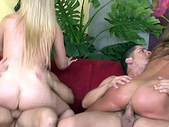 Myah Monroe, Cathy Heaven and Tristyn Kennedy are playing dirty games with men indoors. The guys face-fuck the skanks, then drill their bumholes and practise sandwiching.