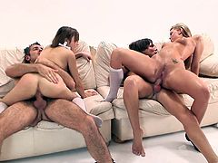 Blondie and brunette provide their fuckers with blowjob. Dark-haired chick gets nailed doggystyle and mish before jumping on dick in a reverse cowgirl pose. Light-haired puss gets her asshole hammered.