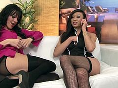 Two sexy dark-haired trannies Jordan Jay and Venus Lux, wearing lingerie and stockings, favour each other with blowjobs and get horny. After that they drill each other's butts doggy style.