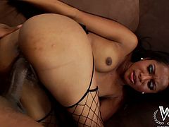 WCP Club brings you a hell of a free porn video where you can see how the alluring ebony Hottie Cali Sweet rides a big black cock while wearing black fishnets.
