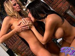 Gorgeous lesbian babes Kelly Madison and Dylan Ryder rub their big juicy boobs before toying their hot pussies with a glass dildo.