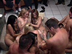 Lyla Lei, Christina Agave, Rebecca Steel, Angel Valentine and Chloe Morgan are having an orgy with some horny studs at a party. The sluts favour dudes with blowjobs and let them fuck their pussies doggy style.