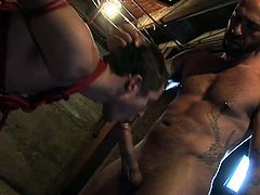 Make sure you don't miss these horny hunks having some fun in the dungeon. One is all tied up and forced to blow meaty dong before getting his tight ass stretched.