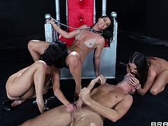 Ariella Ferrera, India Summer and Veronica Avluv are getting naughty with Johnny Sins and Keiran Lee indoors. The brunette bombshells show their cock-sucking skills to the studs and enjoy sex in the reverse cowgirl pose.
