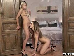 Sweet sexy teens Dido Angel and Jenny F are scorching hot lesbians. They kiss passionately then proceed to their tight shaved twat eating and licking sloppily.