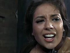 Jynx Maze is a brunette cutie who looks like a veritable whore with spit all over her face from when she gets throat-fucked by her master. He allows her to climax with the help of a fucking machine.