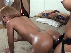 Dark haired doll in high heels displays her hot ass before getting pegged hardcore from all directions by a ebony in a strap on dildo