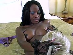 Horny interracial lesbian porn stars with piercings in fishnet stockings licking each others pussy before ravishing each other with toys