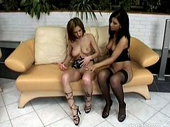 Charming lesbian with hot ass in black stockings fingers a shaved pussy before getting her sex hole drilled with a sex toy