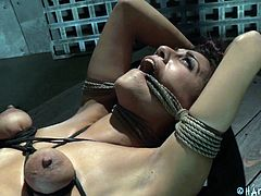 tied tight and fucked roughly