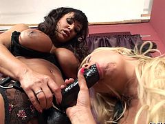 Watch this hot lesbian scene where these horny ladies leave you speechless as they please one another with sex toys.