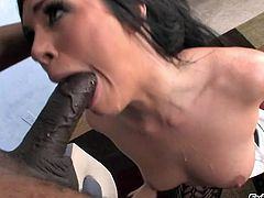 The gorgeous brunette babe Andy San Dimas enjoys deepthroating a huge cock and ends up getting her filthy mouth filled with hot cum.