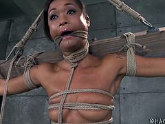 tied hard and skillfully punished