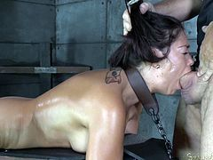 Down in the basement you'll find Ava, a naked bitch who has been tied up and used to offer sexual favors to her merciless guardian. Click to see the slutty babe performing a deep throat job while her hair is pulled aggressively. Don't forget about the best part where she's fucked hard from behind!