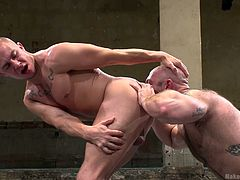 They are bad and they want to win, but in the world of Naked Kombat only one can win and the other has to kneel and suck cock. Check it out how our big boys wrestle hard and then fuck even harder. Both bald and muscled, these guys give the best and finally, the loosed kneels and gets brutally mouth fucked
