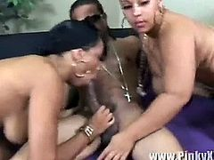 Pinky & Misti Love Banged Hard.