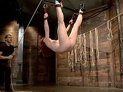A slutty redhead cannot escape without being punished. She has been tied up in a brutal and kinky way in the same time. Don´t hesitate to take a look, because you´ll love seeing her reaching orgasm in a sadomasochistic style. Click to see her screaming when a big dildo is stiffed in her horny pussy.
