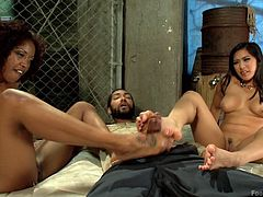 Even if you don't have a feet fetish, this hot kinky video will surely transform you into an adept. A curly ebony babe and a long-haired Asian bitch with big tits are doing awesome feet jobs. They are both naked and encourage the lucky guy to suck their toes. Click to see all the details!
