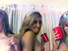 These sexy bimbos are dancing and drinking at a party while the streamers are flying. One of the blonde bitches shows off her massive tits and gets down on her knees to sucks cock. She give an amazing blowjob on a huge cock while all her friends watch the action.