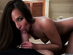 Brunette Amirah Adara loves her sex partner in this hardcore action