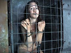 There's a merciless executor who keeps helpless sluts captive in bondage cages and uses them in conformity with his sadistic desires. Click to see Ashley behind the bars, obeying her master's orders. The slutty babe has long hair, small tits and is completely naked. Watch all the kinky details!