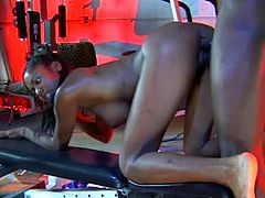 Doting ebony brunette with natural tits delivering a lustful POV blowjob before getting slammed hardcore doggystyle in a wild gym action