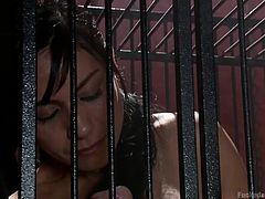 The kinky activities in this video imply the presence of an imprisoned bitch, a dominant man and a specially created hardcore scene for the acts. The brunette slutty babe is closed in a cage and has big tits. Click to watch helpless Beretta sucking a dick through the cage's bars. Enjoy!