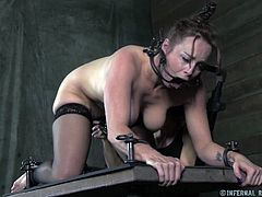 Naughty brunette in stockings gets her cunt fucked with fucking machine