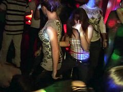 Angelic drunkard babes in panties enjoying club party in reality shoot