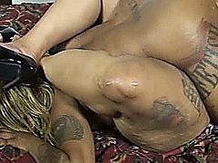 ARCH THAT BACK BITCH !!!  SO I CAN HIT THE PUSSY DOGGYSTYLE ... CHECK IT OUT AS GOTTI WANTS SOME OF MZ BABY DOLLS PUSSY .... EXXXCLUSIVE XXX VIDEO FROM M.A.G.I.C. PRODUCTIONS XXX.. SEE IT ALL AT WWW.MAGICPRODUCTIONSINC.COM