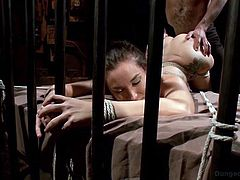 Gabriella is a captive woman, possessed by a truly sadistic man. Now she is tied up strongly in a fierce rope bondage, having no escape. Click to see her lovely buttocks, enlarged, as to enjoy the view of her pussy and appetizing ass hole. Watch the helpless tattooed brunette with small tits, banged from behind!