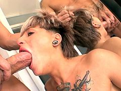 A babe with short hair and tattoos gets fucked and loves it