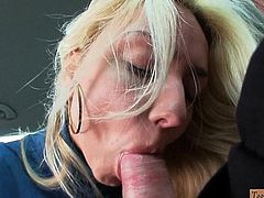 Blondie Victoria Puppy fucked in the car