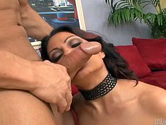 Hot cougar with big fake tits gets spanked while her wet pussy is drilled hardcore