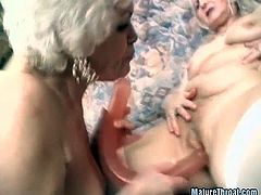 It's funny to see that still at that age, these ladies are willing to masturbate on camera! Take a look at this hot scene where these kinky grannies have fun masturbating one another with a huge dildo!