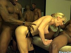 A couple of wild blonde MILFs getting gangbanged by a group of black guys