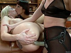 three lesbian bitches play with sex toys